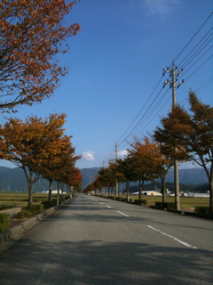 image-20101106143547.png